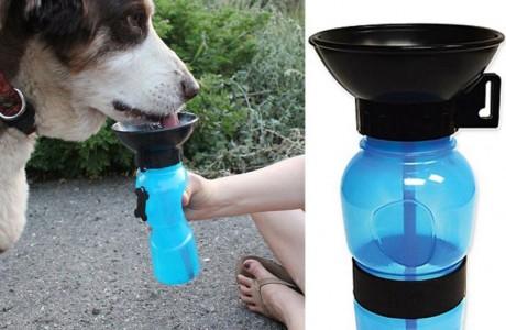 בקבוק שתייה לטיולים לכלב, מושלם עבור החבר הטוב ביותר שלנו!